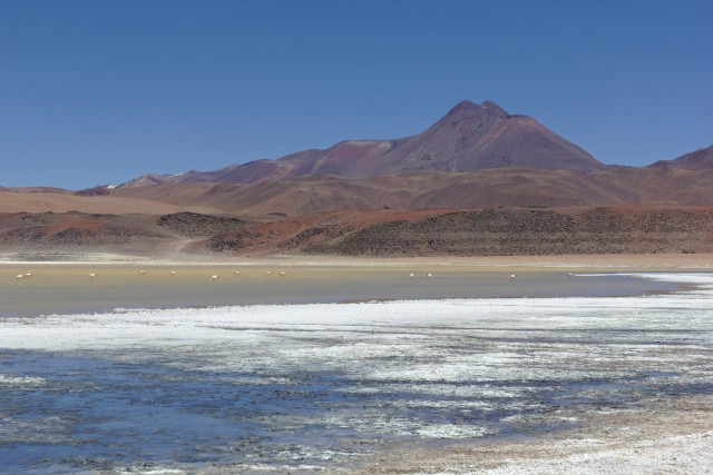 Laguna Lejía