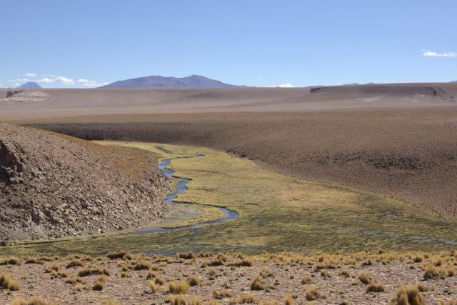 Río Zapaleri